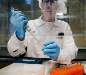 GMO in lab